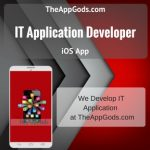 It Application Developer